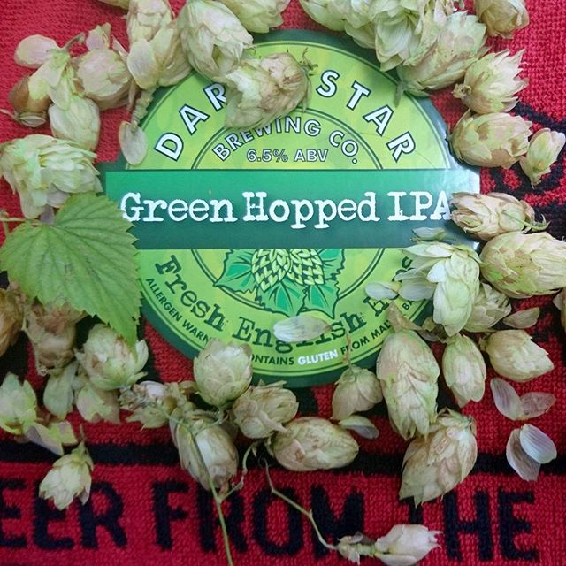 Brewed for those who prefer their hops as an extreme sport, this years Green Hopped IPA 6.5% is poised for action. An already full-flavoured IPA is made even bigger by using fresh 'green' hops infused into the slowly conditioned beer. Available for trade deliveries w/c 14th Oct. #DrinkResponsibly #drinkawareuk